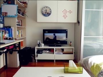 简约清新的一居室装修效果设计